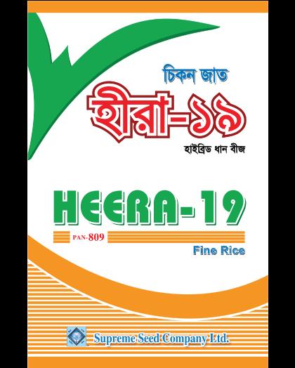 Hybrid Hera Dhan-19